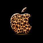 icatch_leopard150
