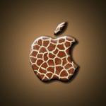 icatch_giraffe
