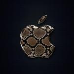 icatch_snake